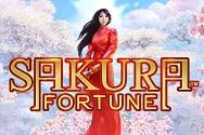 Sakura Fortune thumbnail