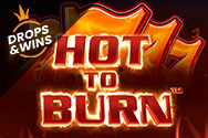 Hot to Burn Slot thumbnail